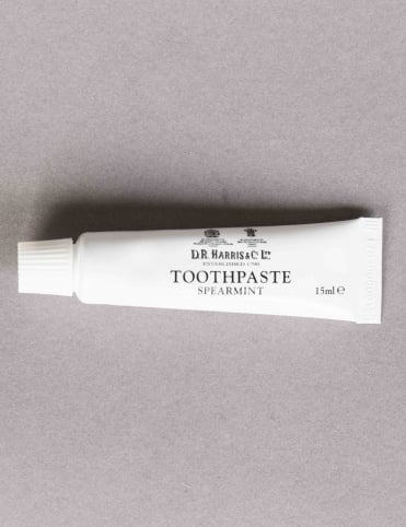 Spearmint Toothpaste Travel Size (15ml)