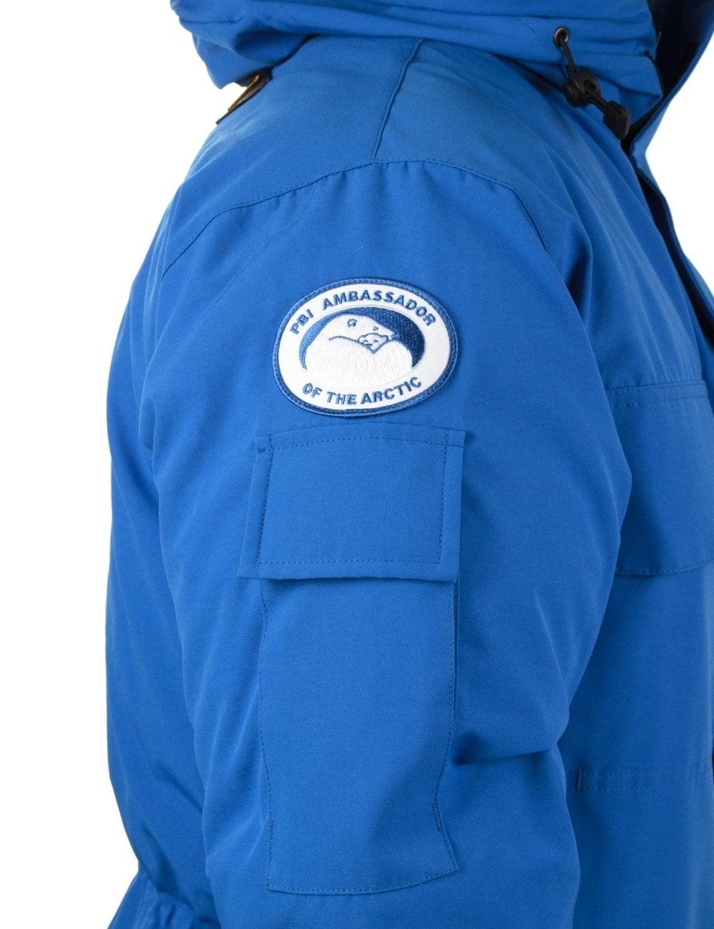 Expedition Parka Polar Bear International - Royal Blue