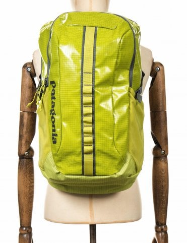 Patagonia Blackhole 25L Backpack - Folios Green 110445196e2dd