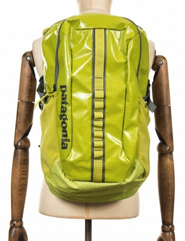 Patagonia Blackhole 30L Backpack - Folios Green 1f58401e8ace9